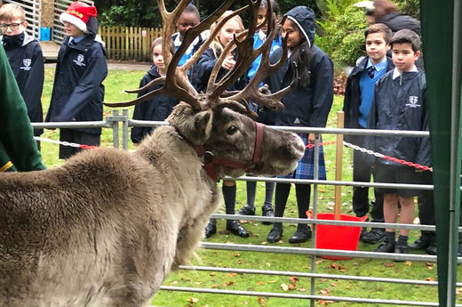 Blitzen and Donner turn up at Sherborne House!